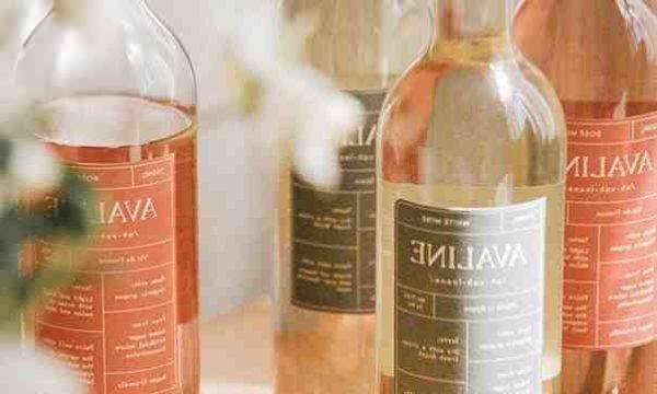 La exitosa vida de Cameron Diaz como empresaria de vinos