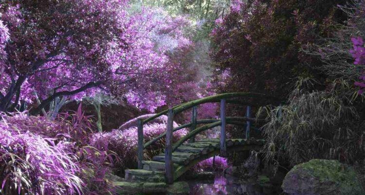 Como Fazer uma Fonte de Jardim