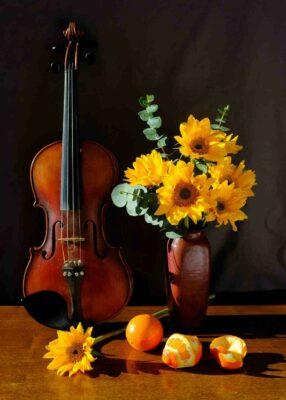 Como Ler Música Para Violino